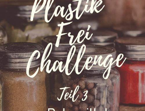 Plastikfrei Challenge Teil 3 – Putzmittel